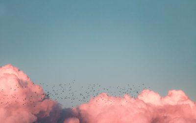 «Cielo en movimiento»