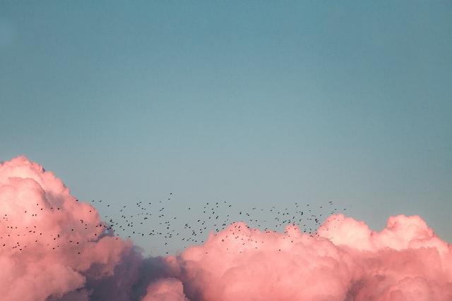 """""""Cielo en movimiento"""""""